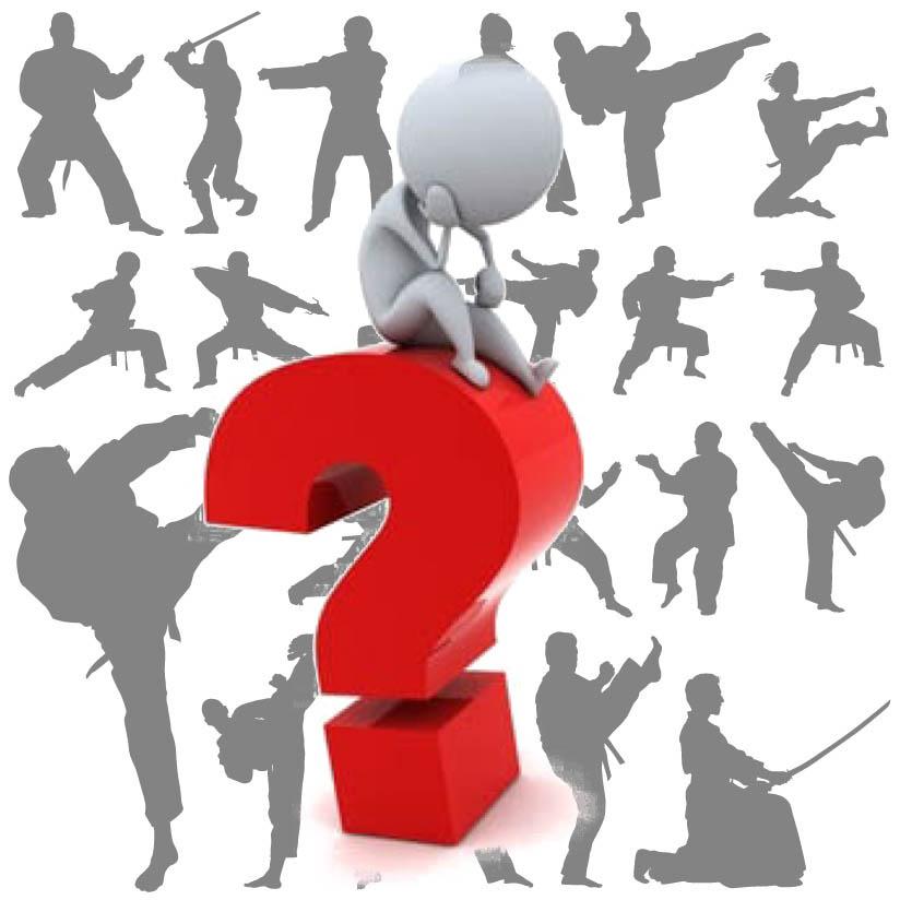 domande sulle arti marziali