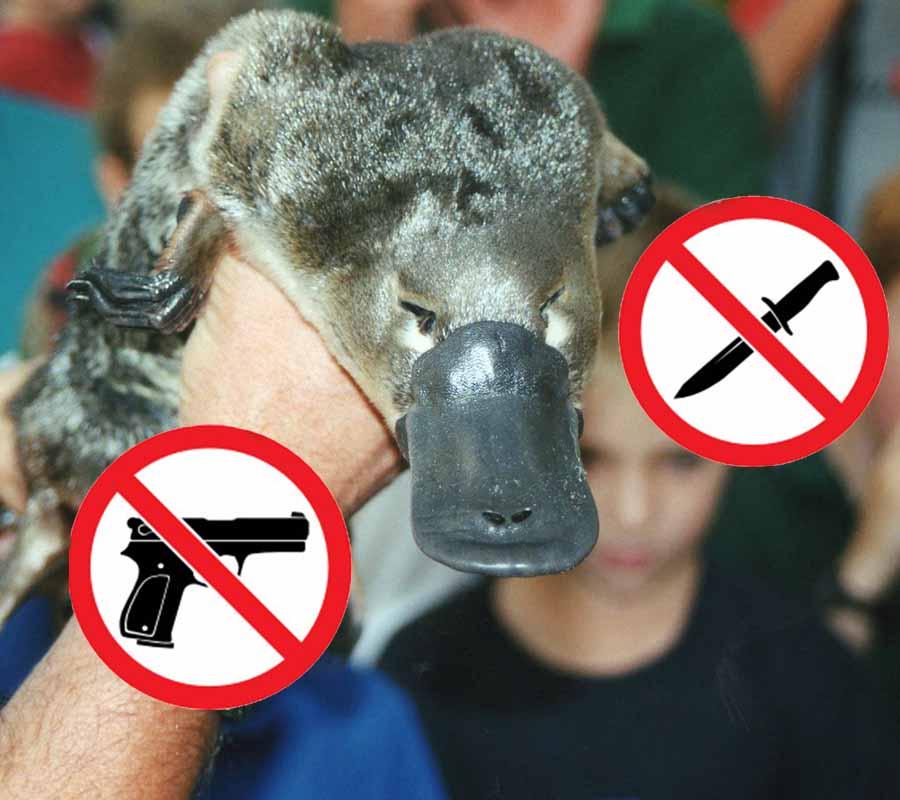 disarmo pistola difesa personale